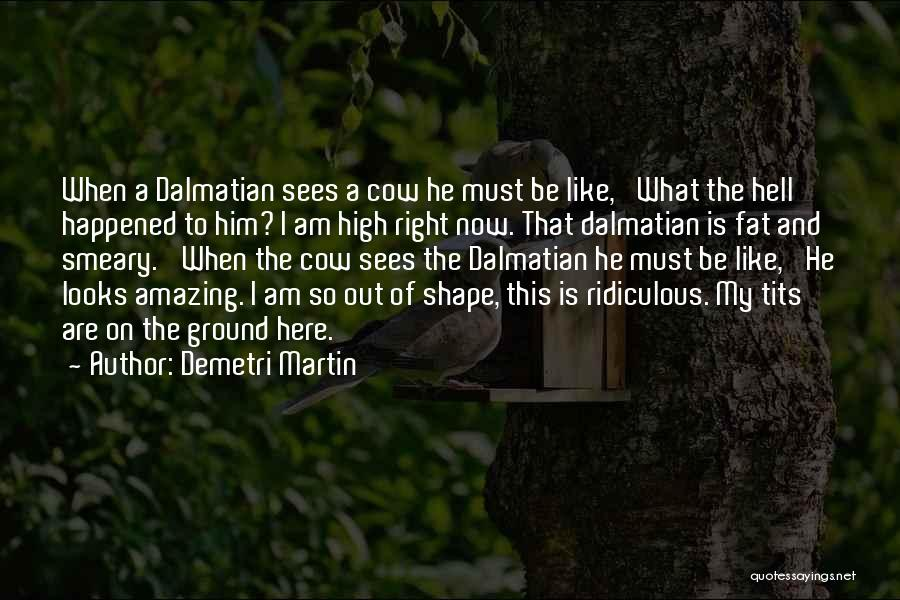 Dalmatian Quotes By Demetri Martin