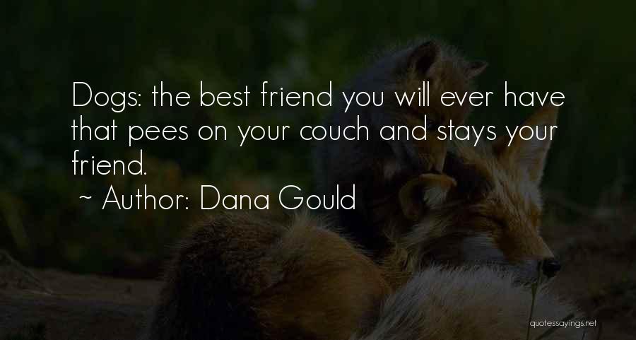 Dana Gould Quotes 807307
