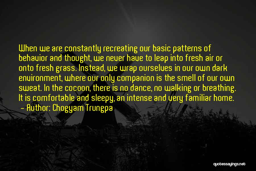 Dance Leap Quotes By Chogyam Trungpa