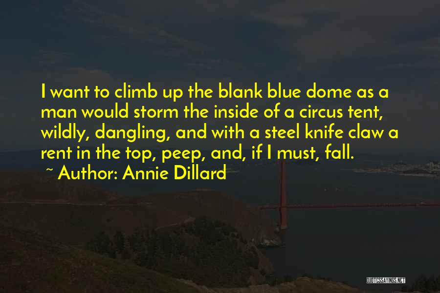 Dangling Man Quotes By Annie Dillard