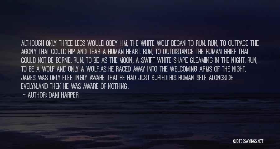 Dani Harper Quotes 2027786
