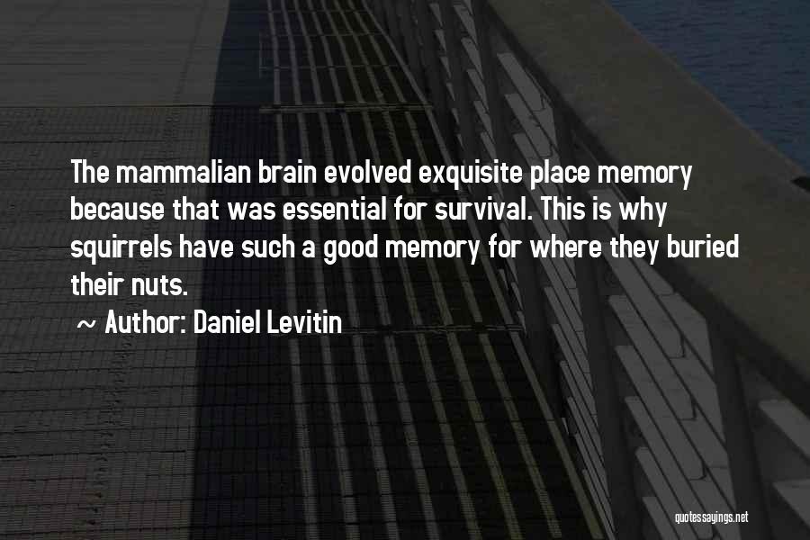 Daniel Levitin Quotes 1477767