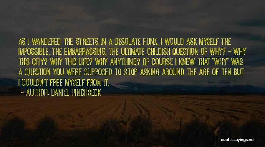 Daniel Pinchbeck Quotes 2005681