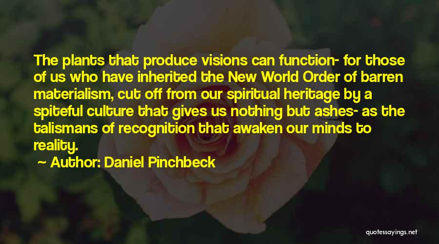 Daniel Pinchbeck Quotes 235375