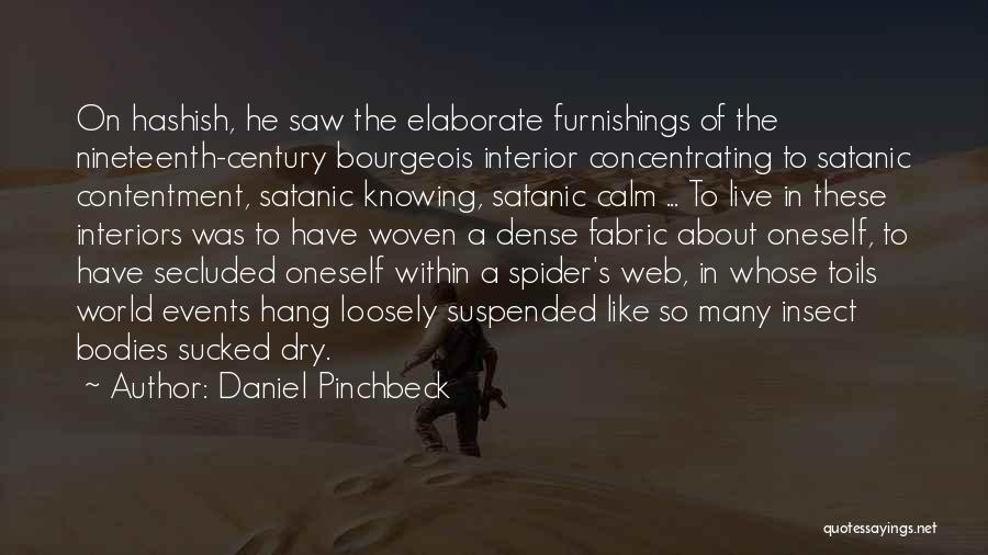 Daniel Pinchbeck Quotes 468906