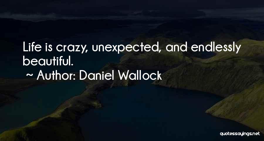 Daniel Wallock Quotes 2172088