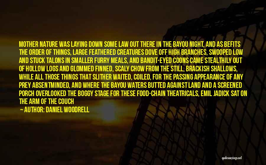 Daniel Woodrell Quotes 767135