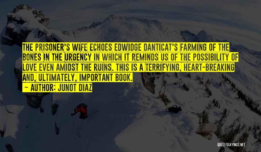 Danticat Quotes By Junot Diaz