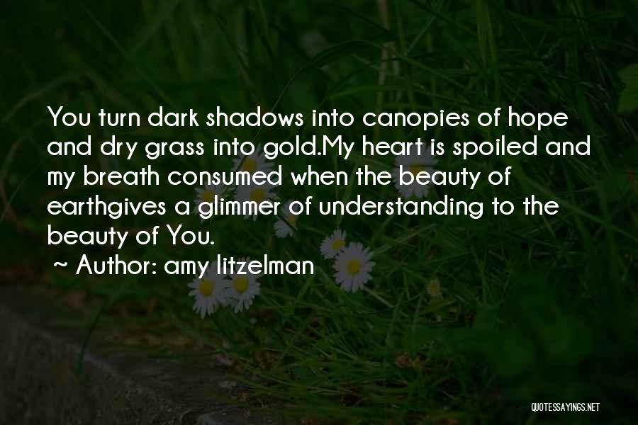 Dark God Quotes By Amy Litzelman