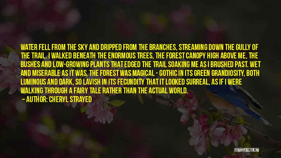 Dark Gothic Quotes By Cheryl Strayed