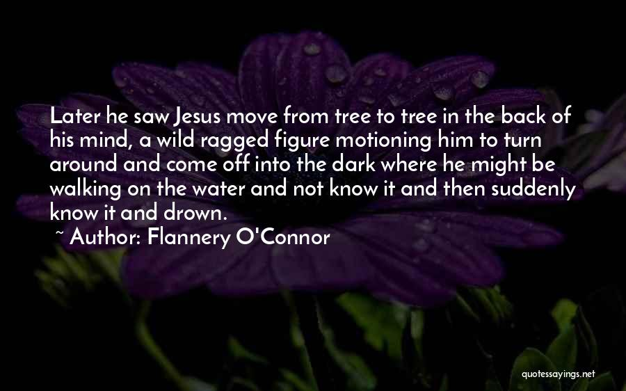 Dark Gothic Quotes By Flannery O'Connor