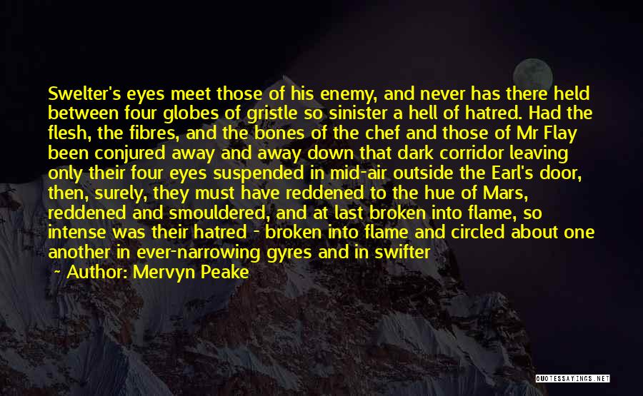 Dark Gothic Quotes By Mervyn Peake