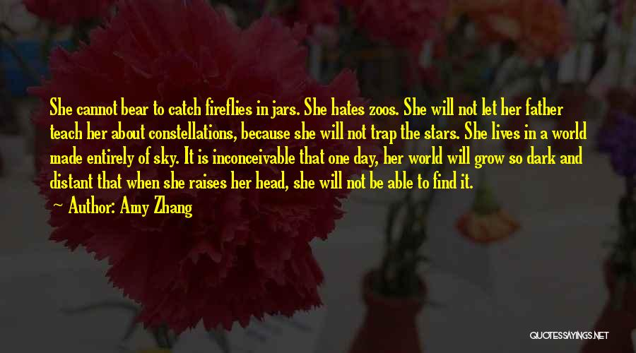 Dark One Quotes By Amy Zhang