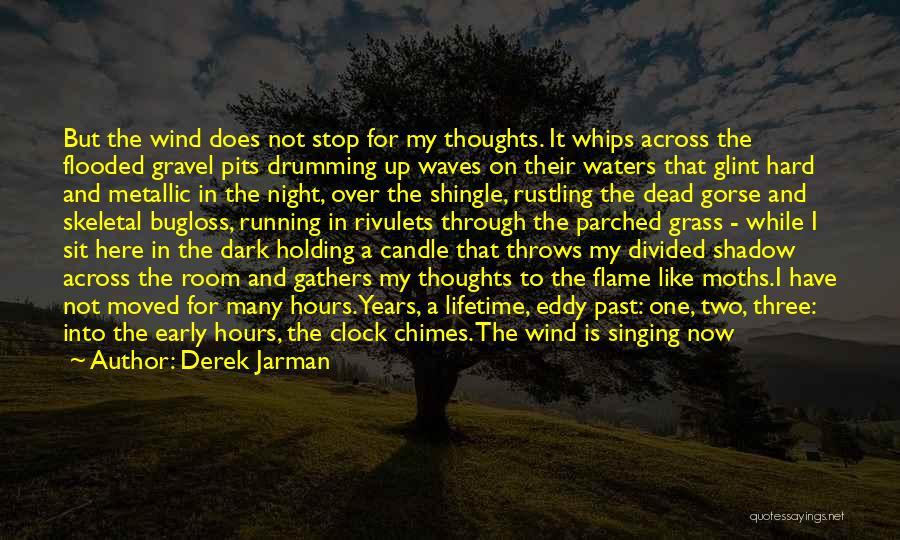 Dark One Quotes By Derek Jarman