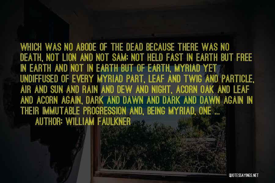 Dark One Quotes By William Faulkner