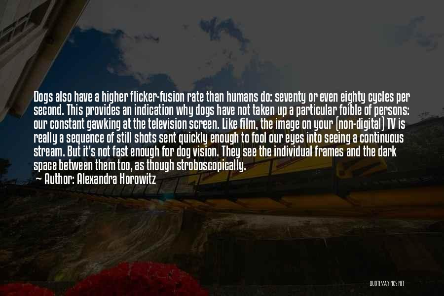 Dark Vision Quotes By Alexandra Horowitz