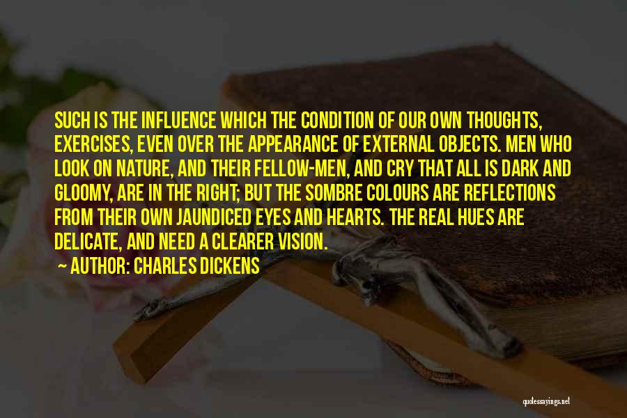 Dark Vision Quotes By Charles Dickens