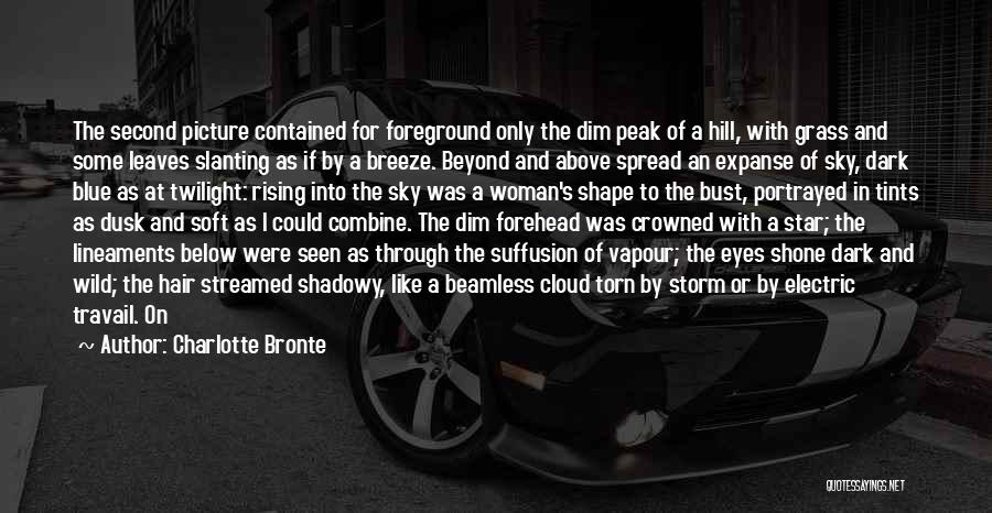 Dark Vision Quotes By Charlotte Bronte