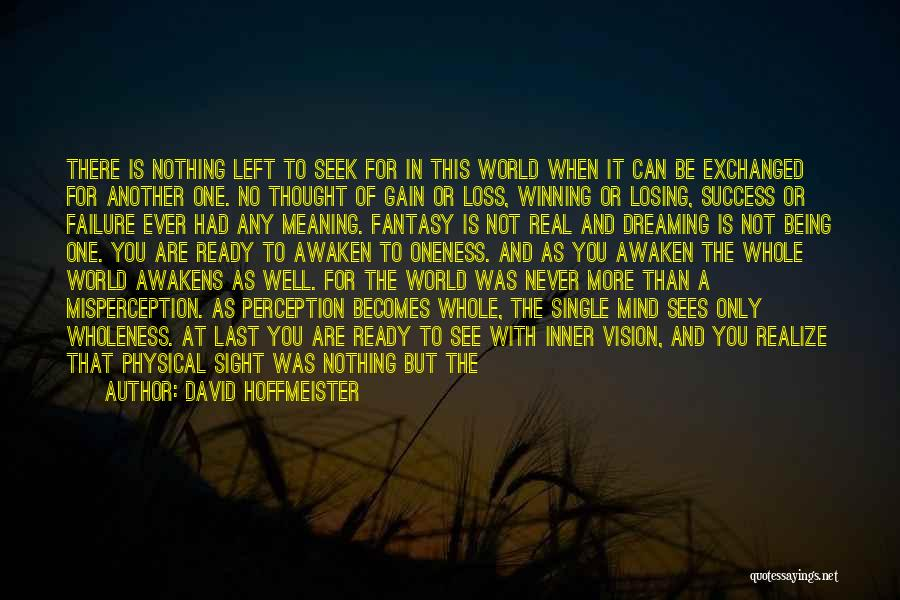 Dark Vision Quotes By David Hoffmeister