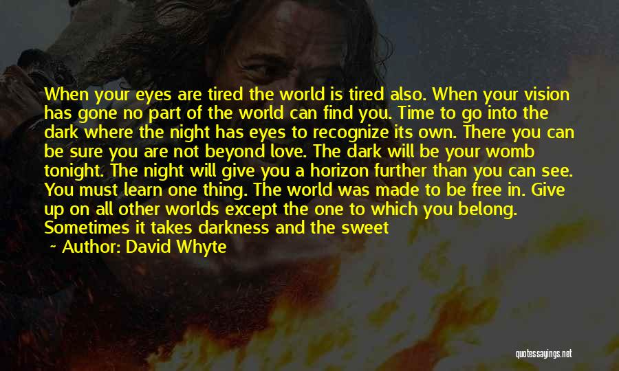Dark Vision Quotes By David Whyte