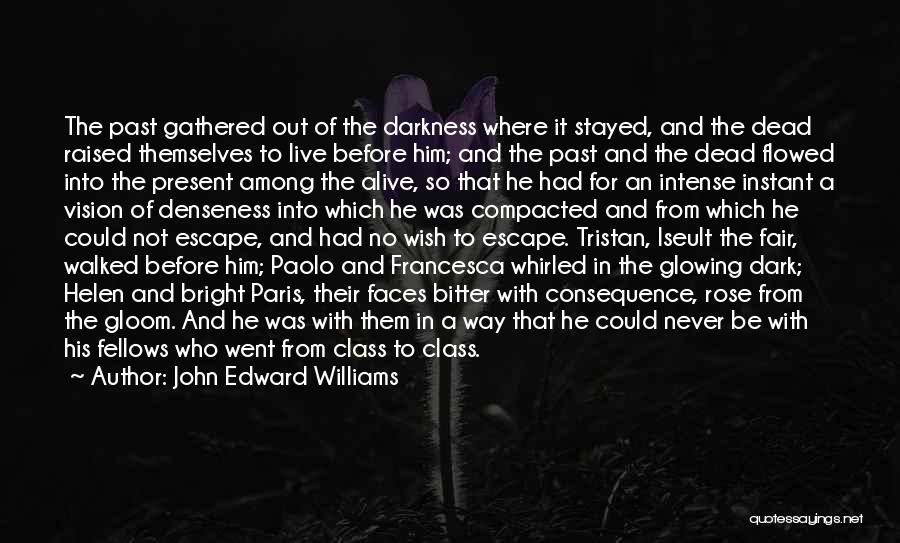 Dark Vision Quotes By John Edward Williams
