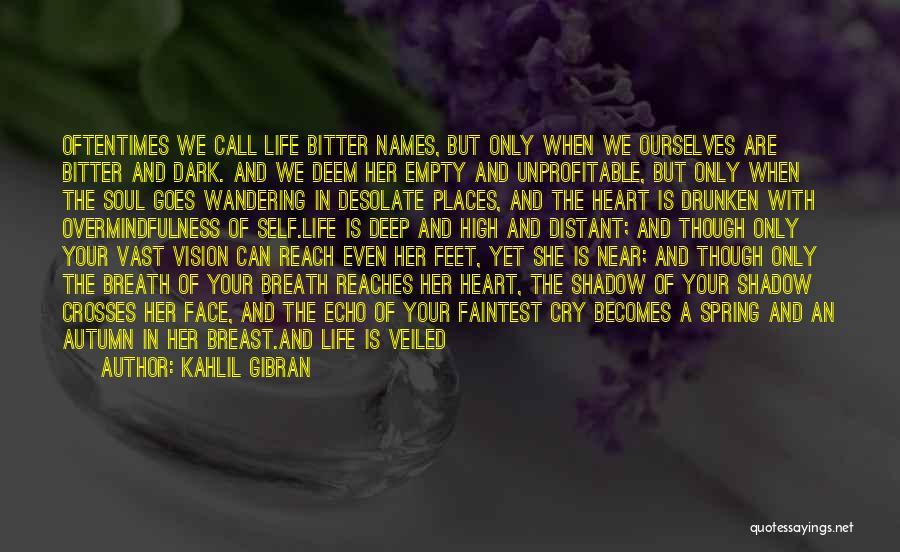 Dark Vision Quotes By Kahlil Gibran