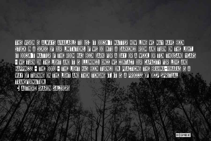 Dark Vision Quotes By Sharon Salzberg