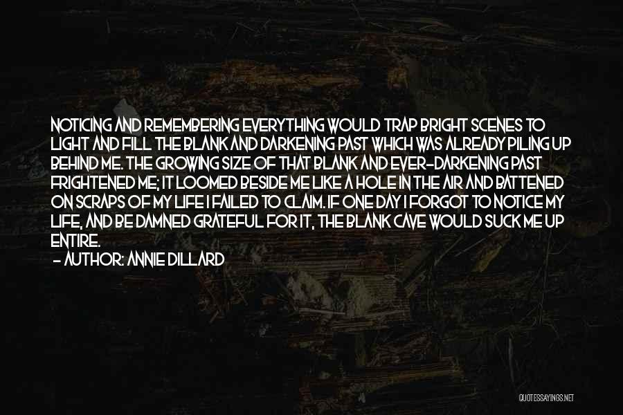 Darkening Quotes By Annie Dillard