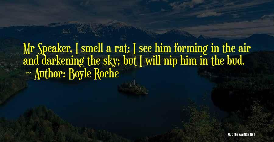 Darkening Quotes By Boyle Roche