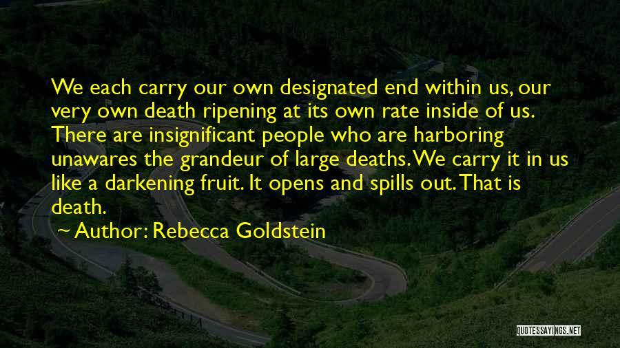 Darkening Quotes By Rebecca Goldstein