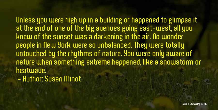 Darkening Quotes By Susan Minot