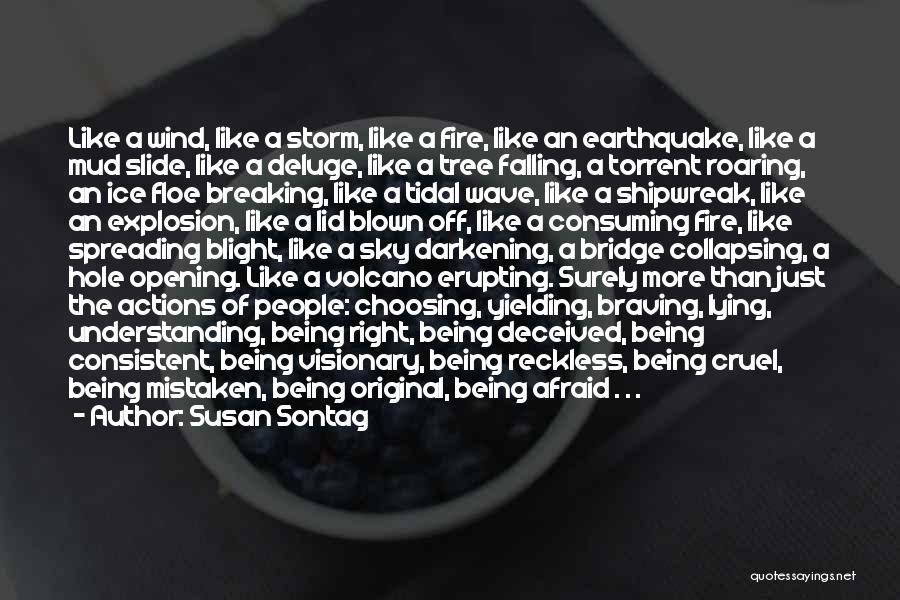 Darkening Quotes By Susan Sontag