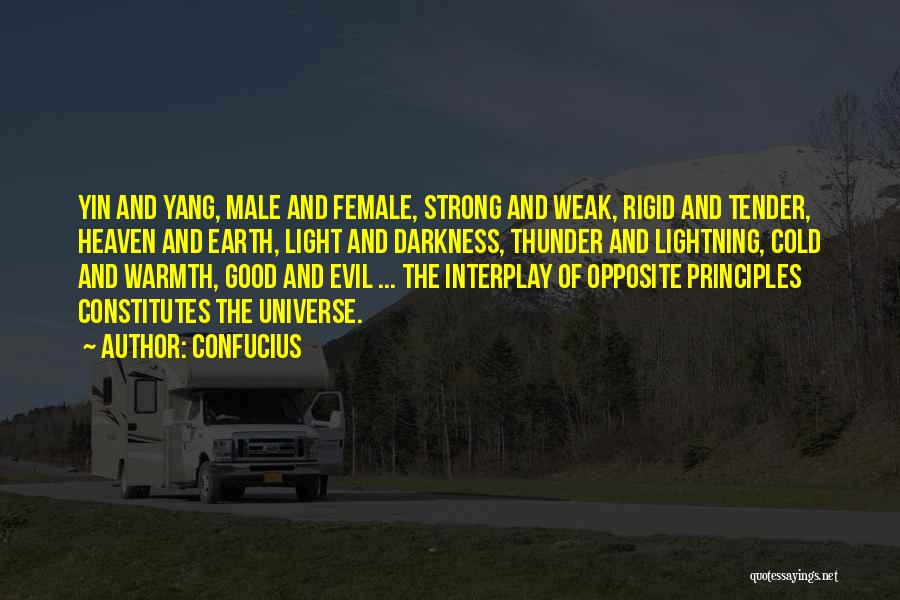Darkness And Evil Quotes By Confucius