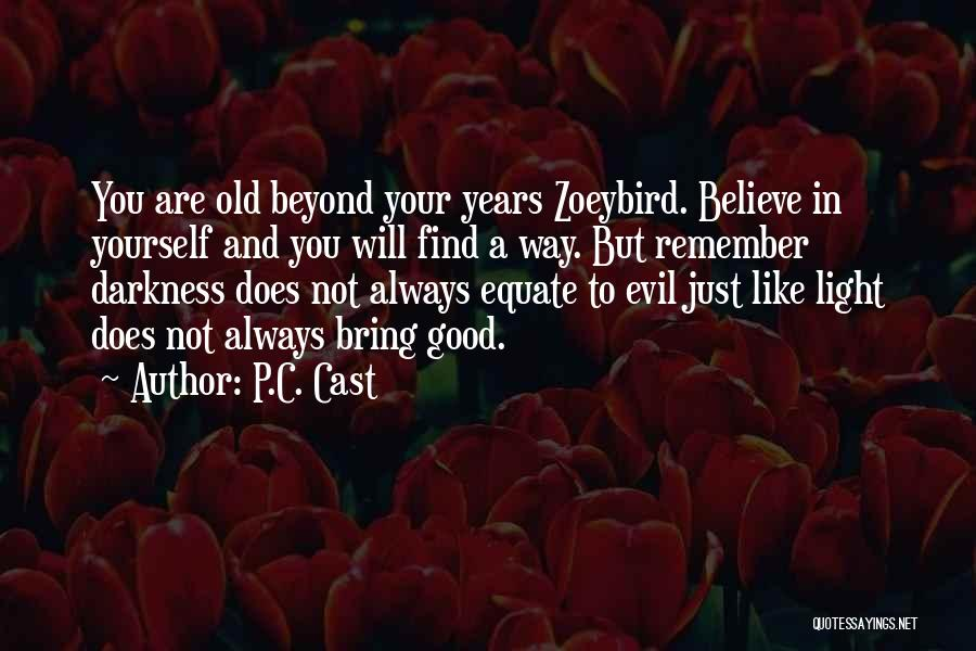 Darkness And Evil Quotes By P.C. Cast