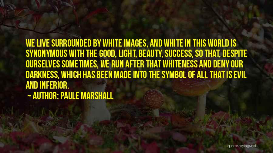 Darkness And Evil Quotes By Paule Marshall