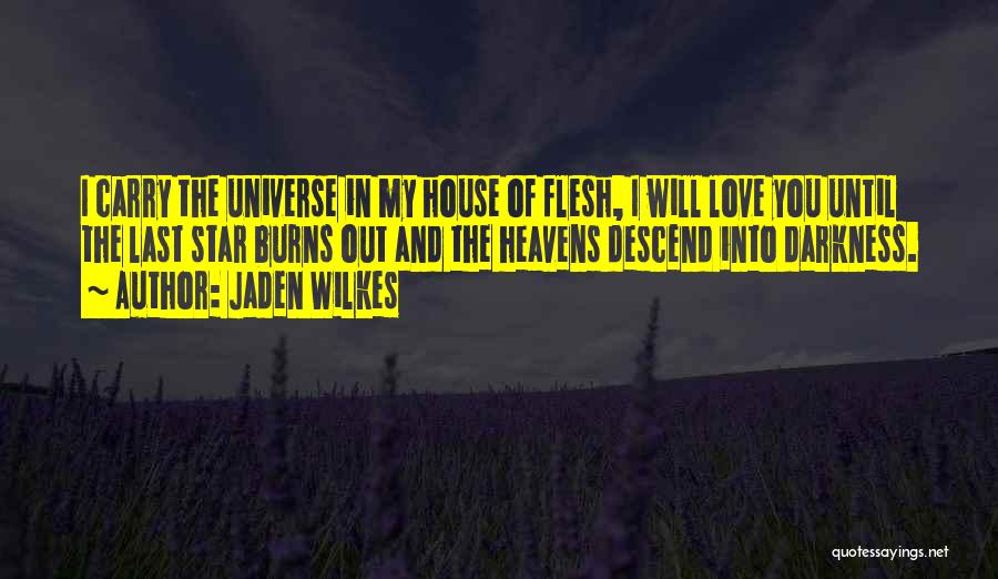 Darkness And Love Quotes By Jaden Wilkes