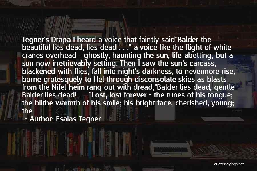 Darkness Of The Night Quotes By Esaias Tegner