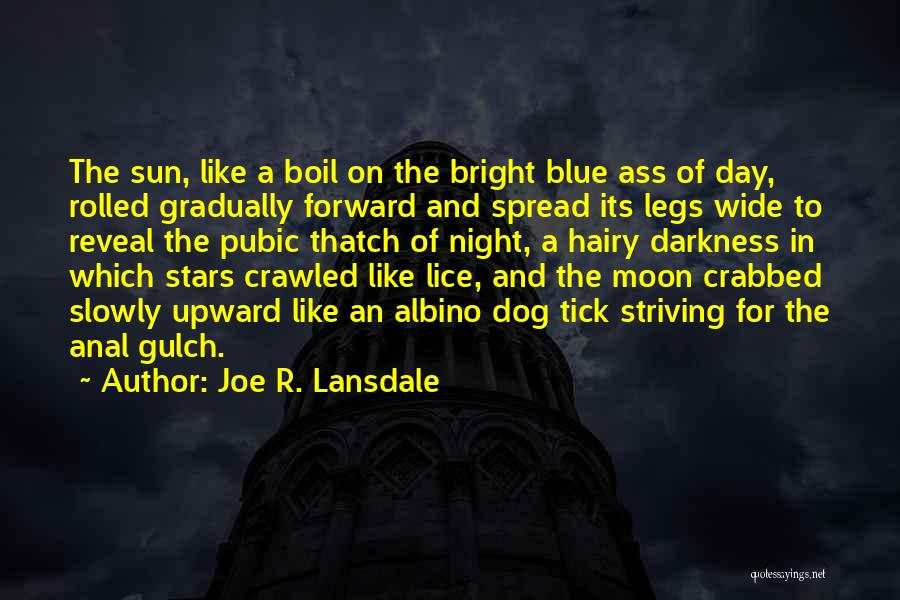 Darkness Of The Night Quotes By Joe R. Lansdale