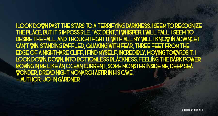 Darkness Of The Night Quotes By John Gardner