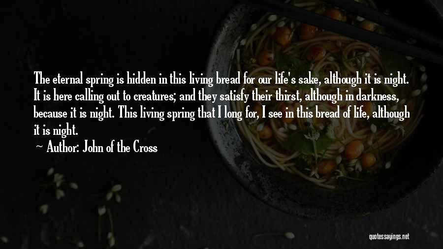 Darkness Of The Night Quotes By John Of The Cross