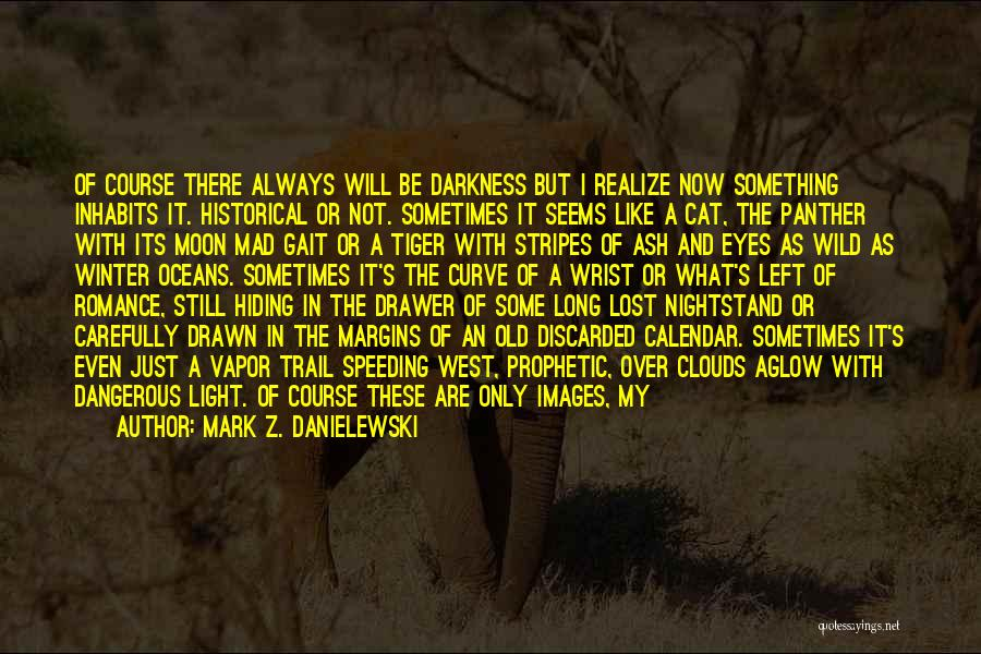 Darkness Of The Night Quotes By Mark Z. Danielewski