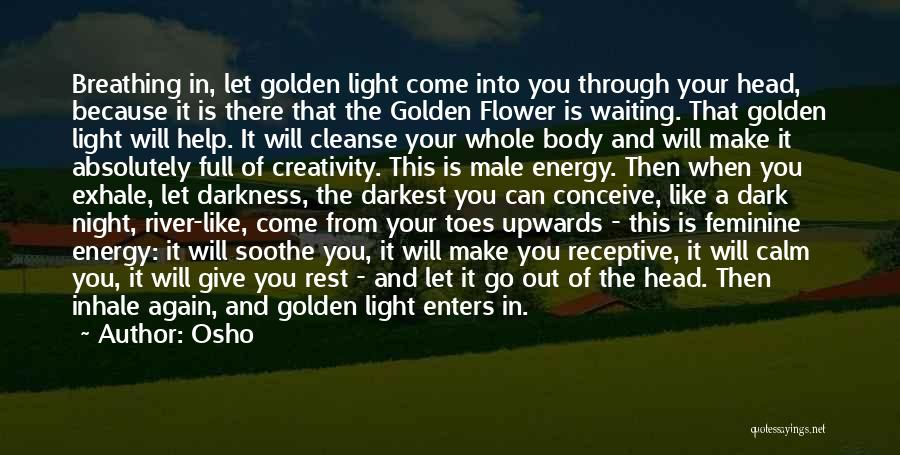 Darkness Of The Night Quotes By Osho
