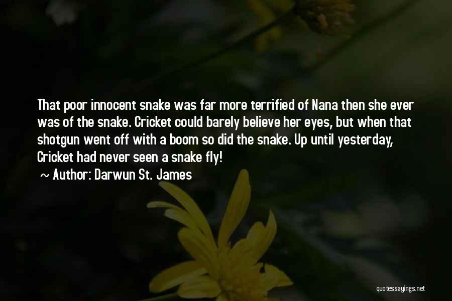 Darwun St. James Quotes 2160363