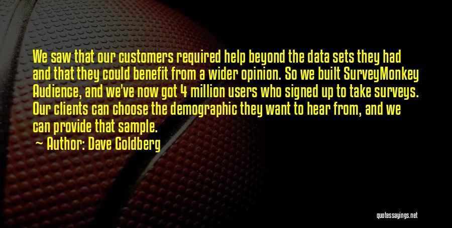 Data Viz Quotes By Dave Goldberg