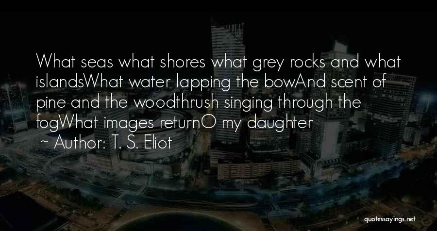 Daughter Inspirational Quotes By T. S. Eliot