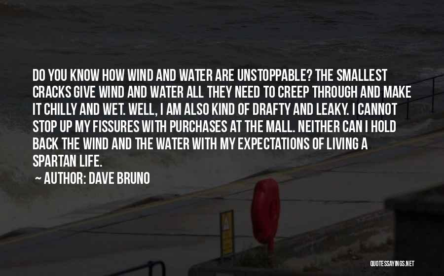 Dave Bruno Quotes 2078431