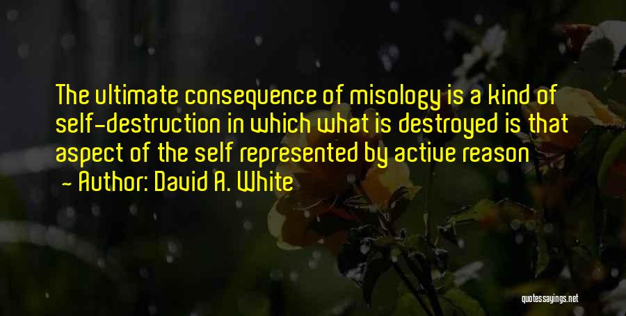 David A. White Quotes 669391