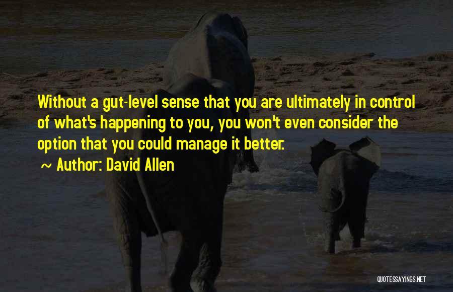 David Allen Quotes 1991191