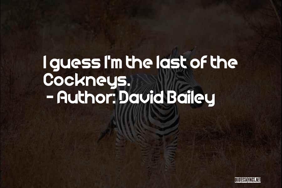 David Bailey Quotes 1045838