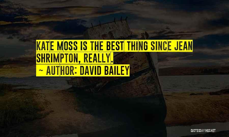 David Bailey Quotes 2029149